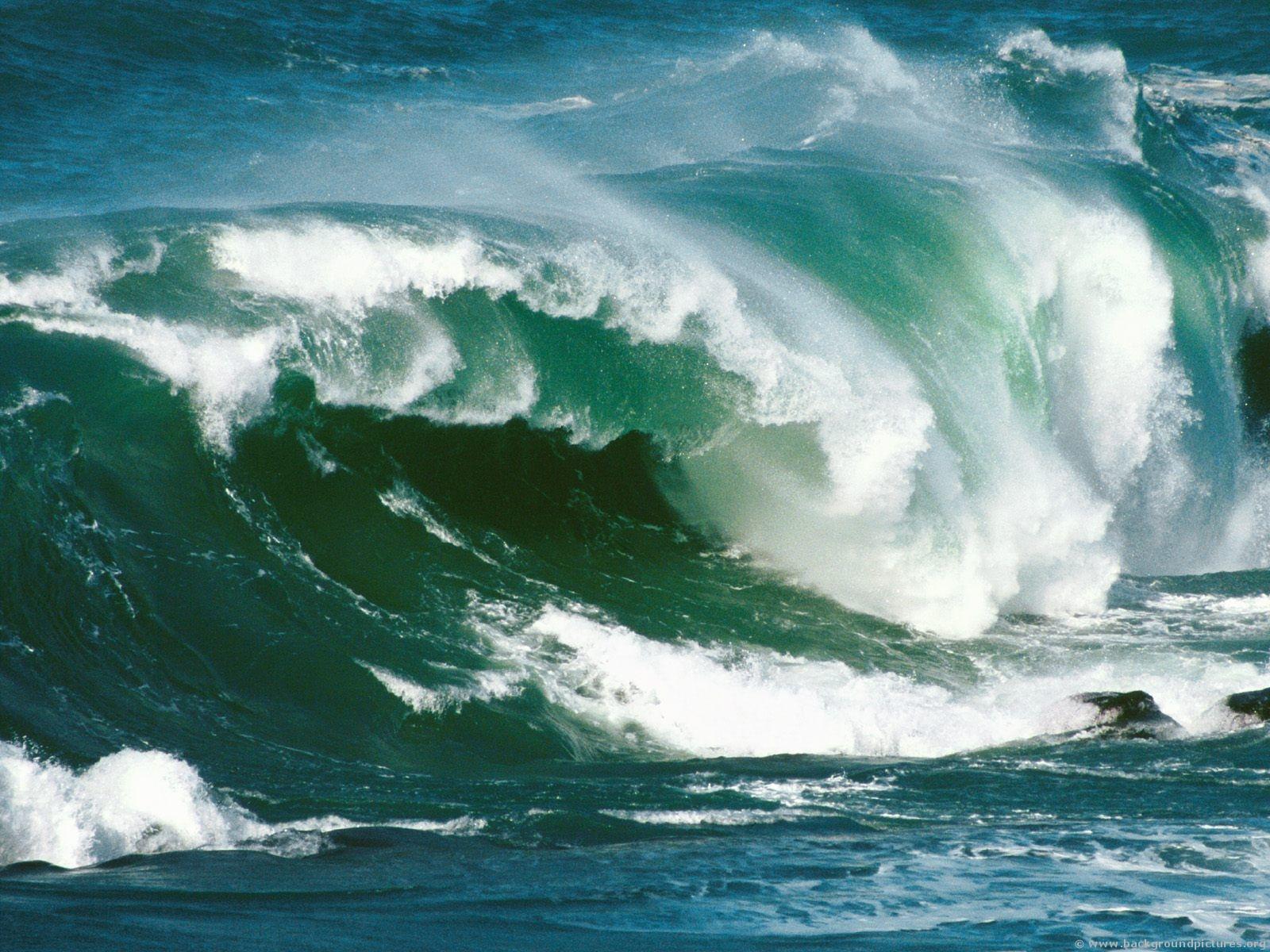 Wave Power About Maui Nui
